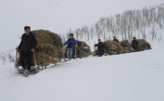 Video Haber: Köylülerin kızaklarla meşakkatli yolculuğu