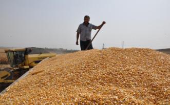 İlaç, gübre ve tohumda da tanzim satışı geliyor