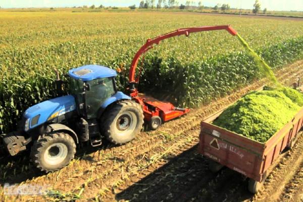 Tarım-ÜFE ocak ayında yüzde 8,29 arttı