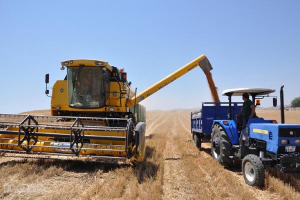 Video Haber: Doğan: Çiftçi tüccarın eline kaldı