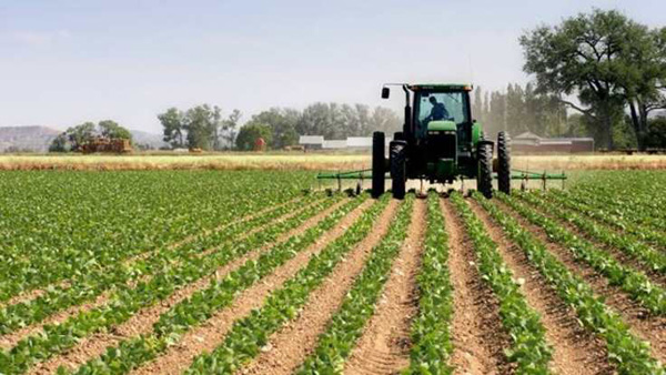 Çiftçinin takipteki borçları yapılandırılıyor