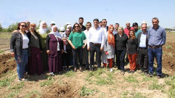 Bismil Belediyesi atıl araziyi kadınlara tahsis etti