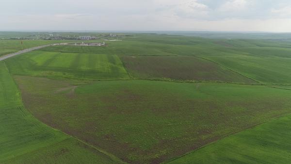 Çiftçiyi kuraklık değil aşırı yağışlar vurdu