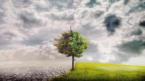 Bilim insanları: İklim değişikliği yüz milyonlarca insanı yerinden edebilir