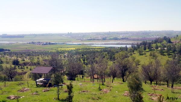 Diyarbakır Kent Ormanı neden imara açıldı?
