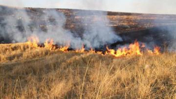 'Anız yangınları toprağa zarar veriyor'