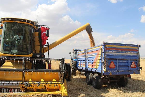 video-haber-1-5-milyon-ton-bugday-hasadi-gerceklestirmeyi-hedefliyoruz