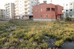 Diyarbakır'da alt yapısı olmayan mahalle: Çelikevler