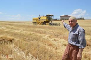 Video Haber: Çiftçiyi kuraklık değil aşırı yağışlar etkiledi