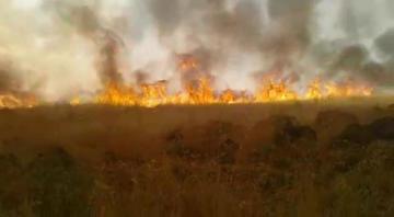 VİDEO HABER – 'Anız yangınlarından dolayı toprak özelliğini yitirdi'