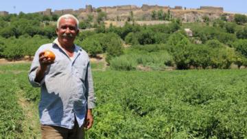 Hevsel Bahçeleri çiftçileri pazar yeri istiyor