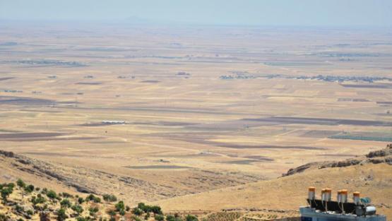 Maliyetler artınca, birçok çiftçi mısır ekemedi
