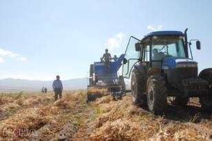 Video Haber: Bitlis'te üretilen fasulye 57 ile gönderiliyor