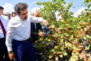 'Diyarbakır yeryüzü cennetidir'
