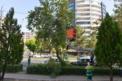 Büyükşehir'den ağaç budama çalışması