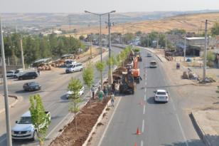 Büyükşehir Belediyesi Silvan Caddesi'ni ağaçlandırıyor