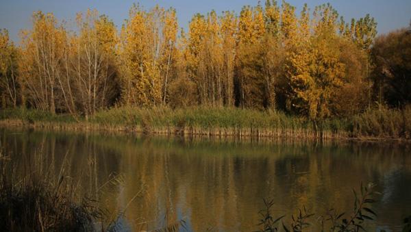 Hevsel Bahçeleri ve Dicle Nehri'nde sonbahar