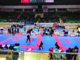 Karate şampiyonası Diyarbakır'a renk kattı