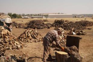 VİDEO HABER – Siirt'te odun ve kömüre rağbet var