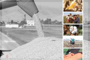 VİDEO HABER – 'Türkiye'de bilinçli tarım yapılamıyor'