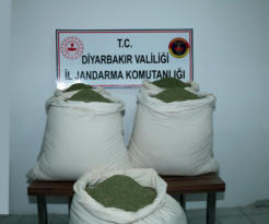 VİDEO HABER – Öğrenci servisinde 176 kilogram esrar ele geçirildi