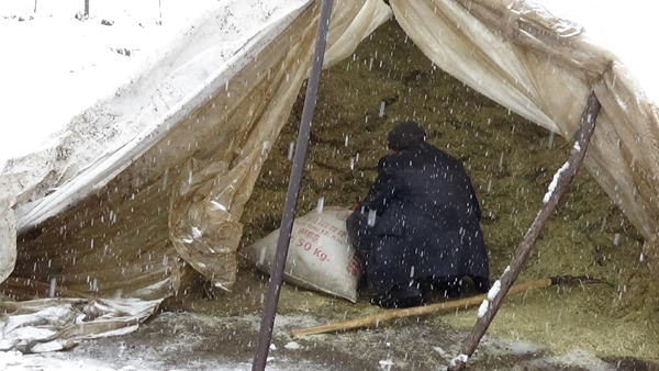 Köylerde kış çilesi başladı