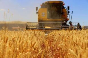 VİDEO HABER – 'Tarımsal desteklemeler zamanında ödenmeli'