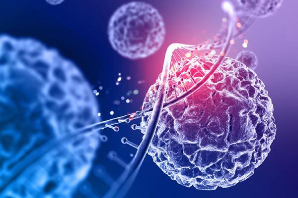 TÜİK ilk kez açıkladı: Türkiye'de biyoteknoloji