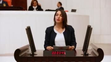 'Kürtçe sağlık hizmeti sorunu' Meclis'e taşındı