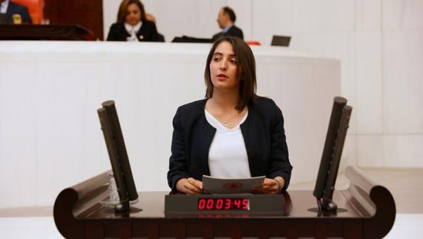 Diyarbakır'daki istismar vakaları Meclis'e taşındı