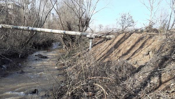 'Dicle Nehri korunması gereken bir nimettir'