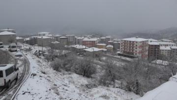 Kulp'ta taşımalı eğitim veren okullara kar tatili