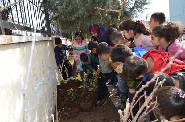 Okullarda yeşil alan seferberliği