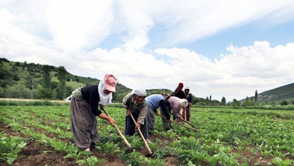 'Çiftçiler arasındaki haksız rekabeti reddediyoruz'