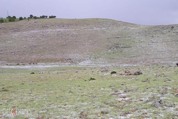 Dolu yağışı yeri beyaza bürüdü