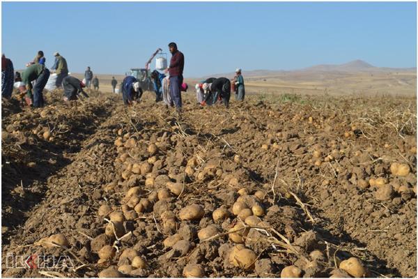 Tarlada çalışan çiftçilere koronavirüs uyarısı