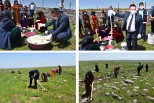 VİDEO HABER – Karacadağ pirinci ve peyniri üretilecek!