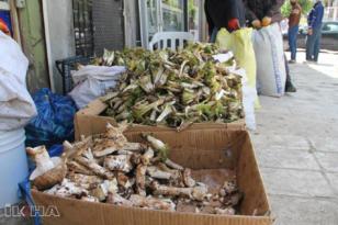VİDEO HABER – Tezgâhlarda bahar lezzetleri bereketi yaşanıyor