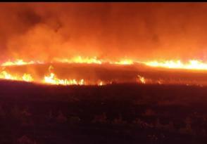 VİDEO HABER – Çınar'da 70 dönümlük ekili arazi kül oldu