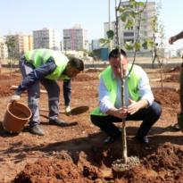 'Doğayı koruyan çevre dostu belediye olduk'