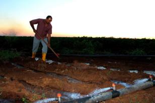 Dicle Elektrik'ten çiftçilere 'Değişken Tarife' önerisi