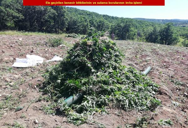 VİDEO HABER – Diyarbakır'da uyuşturucuya geçit verilmiyor!