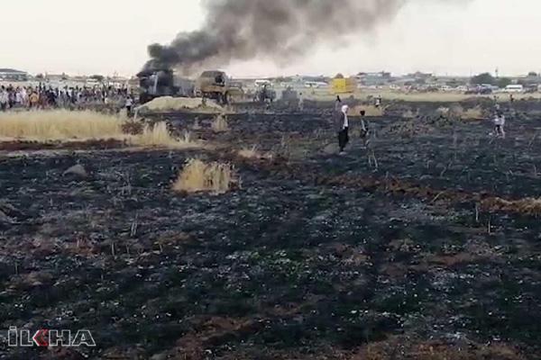 VİDEO HABER – 100 dönümlük ekili arazi küle döndü