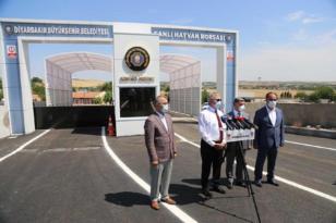 VİDEO HABER – 'Diyarbakır hayvancılıkta önemli bir konuma gelecek'