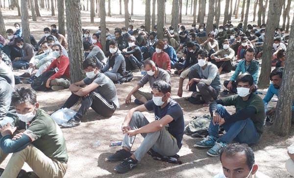 Silvan'da 142 düzensiz göçmen yakalandı