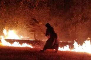 VİDEO HABER – Cudi'deki yangına neden müdahale edilmiyor?