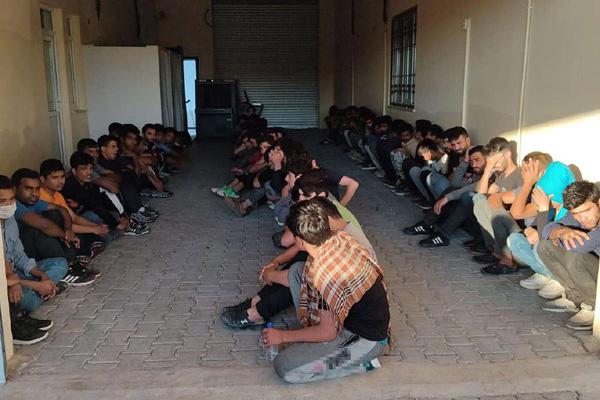 VİDEO HABER – 65 düzensiz göçmen yakalandı
