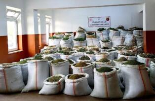 Lice kırsalında bin 418 kilo esrar ele geçirildi