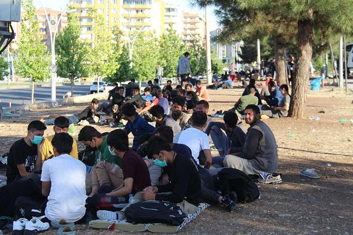 mülteci-göçmen